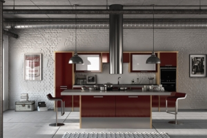 Duleek high gloss burgundy kitchen