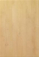 Goscote sandy birch woodgrain