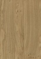 PVC edged woodgrain light winchester oak