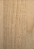 PVC edged woodgrain stilo walnut